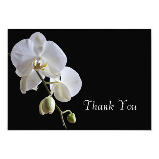 White Orchid on Black Wedding Flat Thank You Notes Card