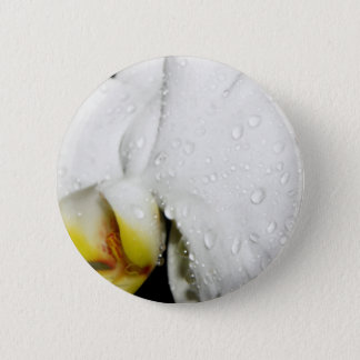 White Orchid Pinback Button