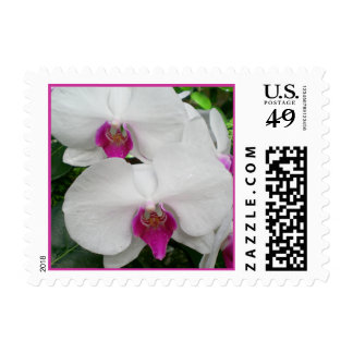 White Orchid Postage