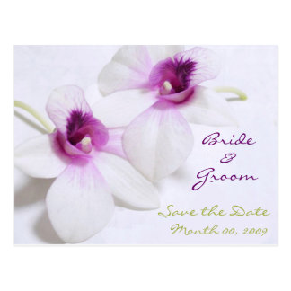 White Orchid Save the Date postcards