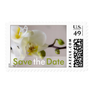 White Orchid Save the Date Stamp