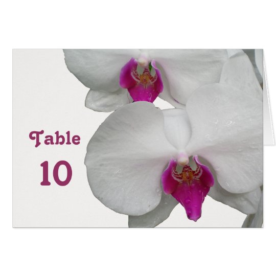 White Orchid Table Card