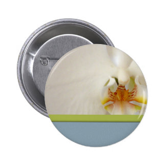 White orchid template with blue and green accent button