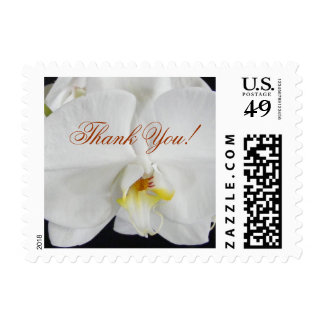 White Orchid Thank You! Postage