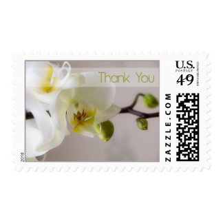White Orchid Thank You Stamp