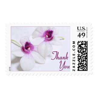 White Orchid Thank You stamps