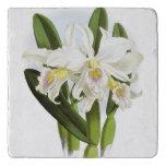 White Orchid Trivet