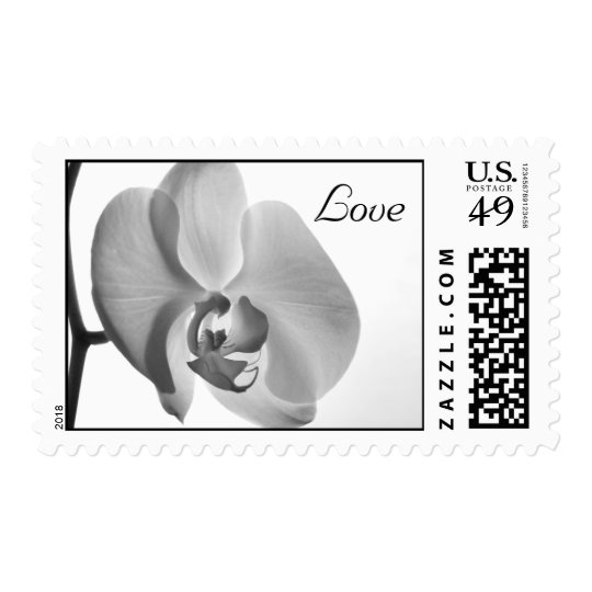 White Orchid Wedding Love Postage