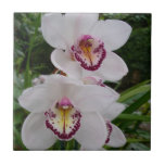 White Orchids Beautiful Tropical Flowers Ceramic Tile