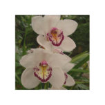 White Orchids Beautiful Tropical Flowers Wood Wall Decor