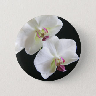 White Orchids on Black Pinback Button
