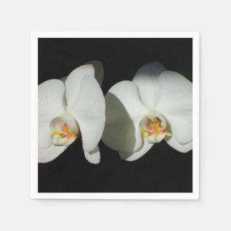 White Orchids - quiet moments Napkin