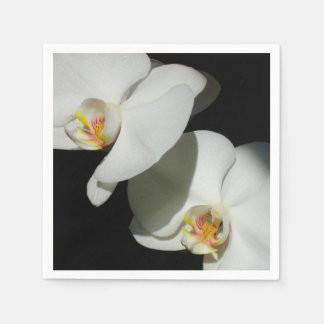 White Orchids Standard Cocktail Napkin