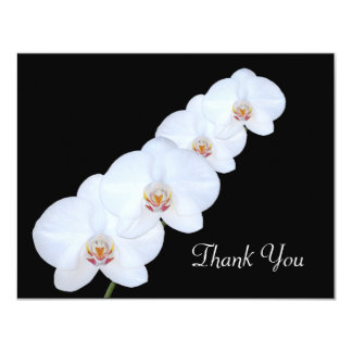 White Orchids Thank You Card