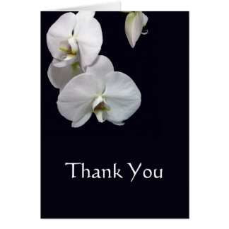 White Orchids Thank You Note Card