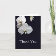 White Orchids Thank You Note Cards