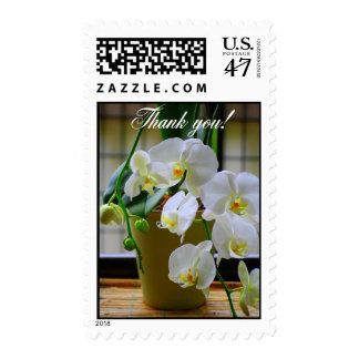 White Orchids Thank You! Postage