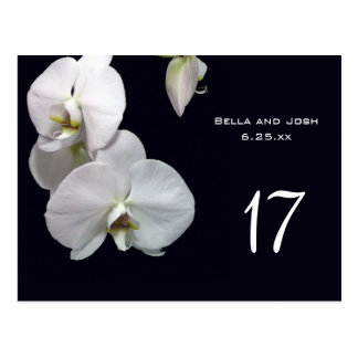 White Orchids Wedding Table Card Postca