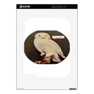 white owl drawing decal for the iPad 2