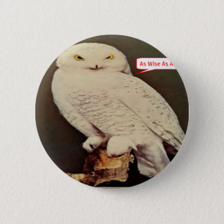 white owl drawing pinback button