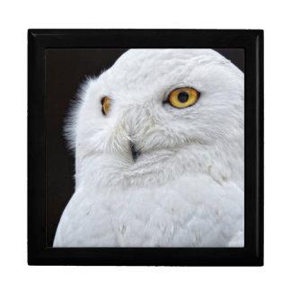 White Owl Jewelry Box