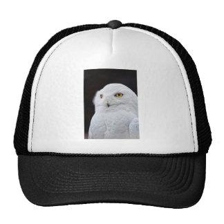 White Owl Hats