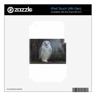 White Owl in Night Decal For iPod Touch 4G