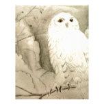 White Owl Letterhead