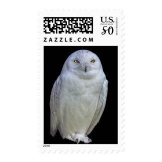 White Owl Postage