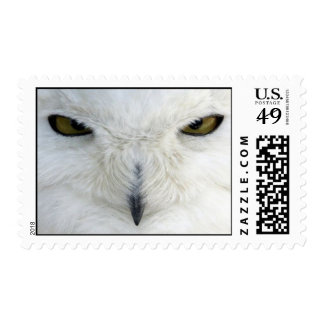 white owl postage stamps