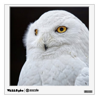 White Owl Wall Sticker