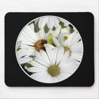 White Oxeye Daisies Mouse Pad