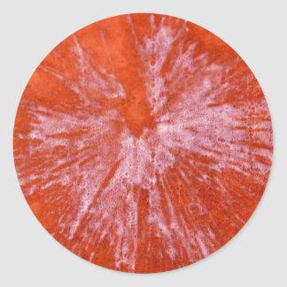 White Paintball on Red Classic Round Sticker