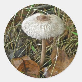 White Parasol Mushroom Coordinating Items Classic Round Sticker