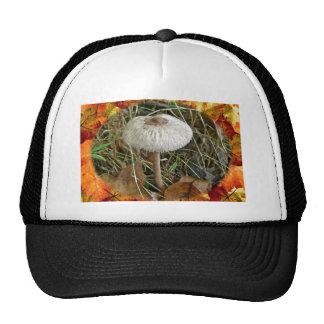 White Parasol Mushroom Coordinating Items Trucker Hat