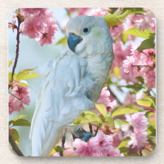 White Parrot in Tree Coaster Set