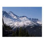 White Pass 30 Postcard