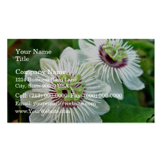 White Passionfruit cream flowers Business Card
