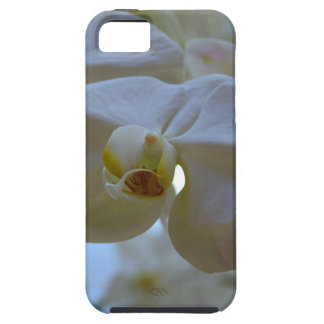 White Peabody Orchid III iPhone SE/5/5s Case