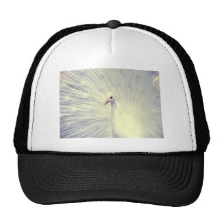 White Peacock Fine Art Photography Trucker Hat