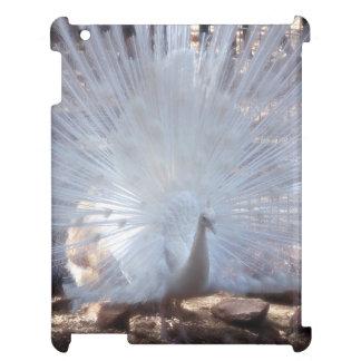 White Peacock iPad Cover