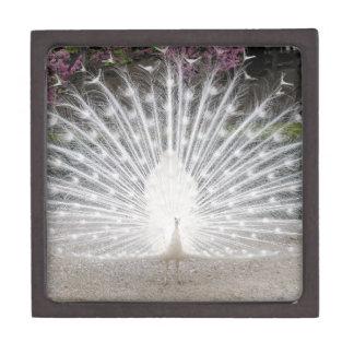 white peacock jewelry box