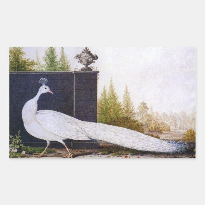 White Peacock Rectangular Sticker