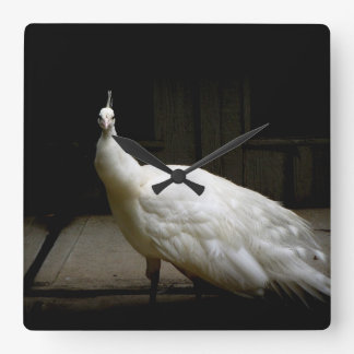 White peacock vintage nature bird woodland photo square wall clock