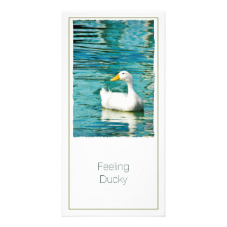 White Pekin Duck  - Nature Photo in Reflections Photo Card