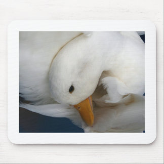 White Pekin Duck with head tucked under picture Mousepad
