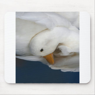 White Pekin Duck with head tucked under picture Mousepads