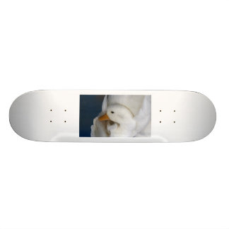 White Pekin Duck with head tucked under picture Custom Skateboard
