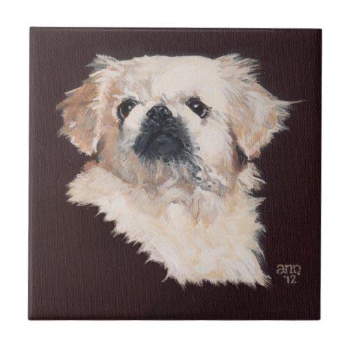 White Pekingese Dog Tiles | Zazzle
