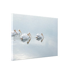White Pelican Birds Animals Wrapped Canvas Print